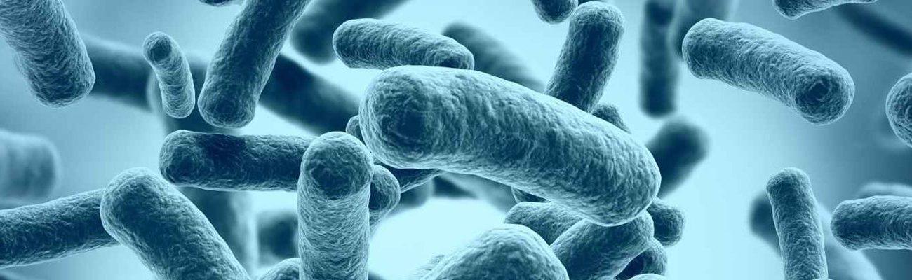 Microbiology of Metalworking Fluids